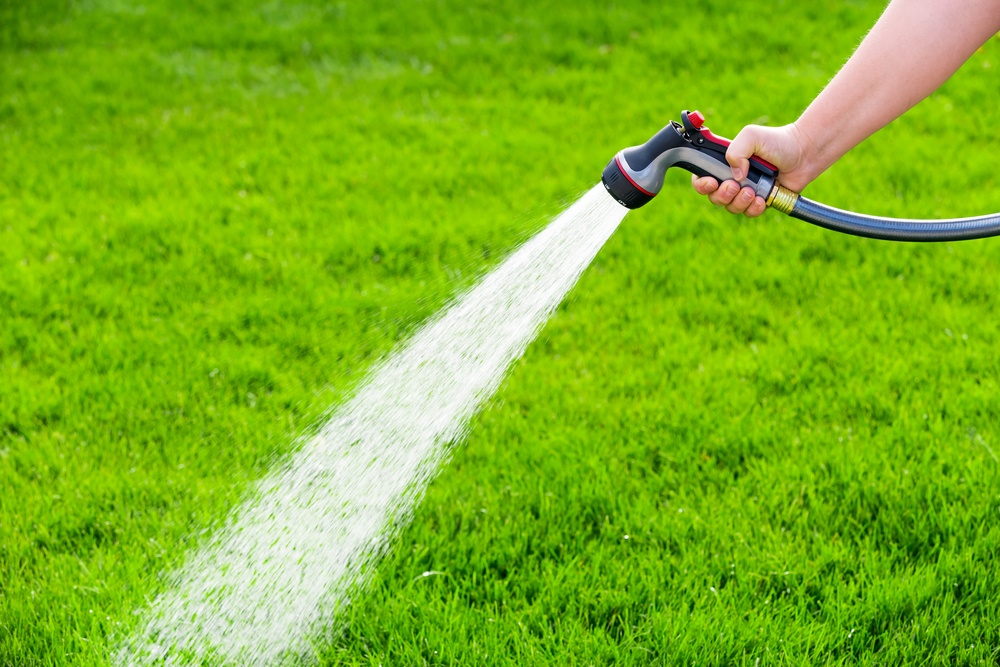 Image result for water the lawn